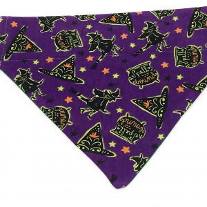 Purple Witches Halloween Dog Bandana
