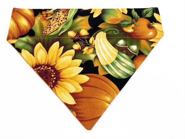 Autumn Dreams dog bandana