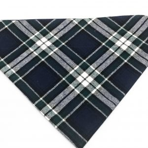 Blue/Green Oxford Plaid dog bandana