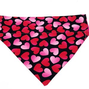 Bright and Beautiful dog bandana